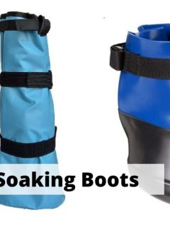 Best Hoof Soaking Boots and bags for horses and how to use hoof soaking boots