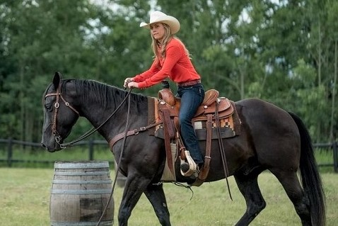 Spartan, black Quarter horse owned by Amy Fleming from Heartland