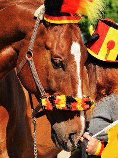 Girl and horse celebrating National Horse Day