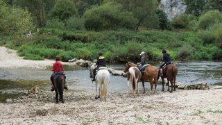 Horse riding trail in California