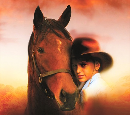 Chestnut Arabian horse from the TV series My Friend Flicka