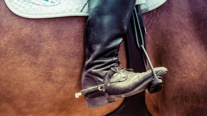 Best vegan horse riding boots, synthetic, PU, and for men and women