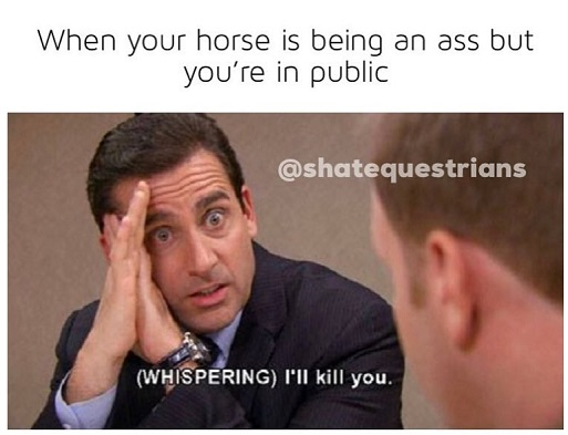 Silently trying to teach your horse a lesson in front of people