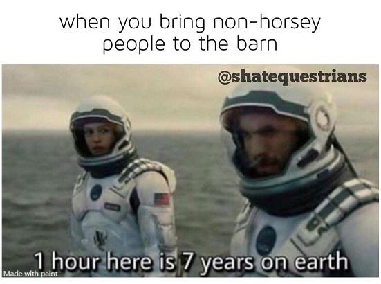 funny people down the yard meme