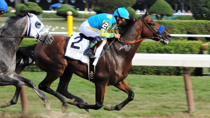 American Pharoah racehorse stats, owner, worth, stud fee, record, and more