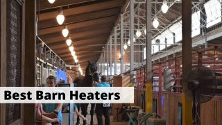 Best barn and horse stall heaters