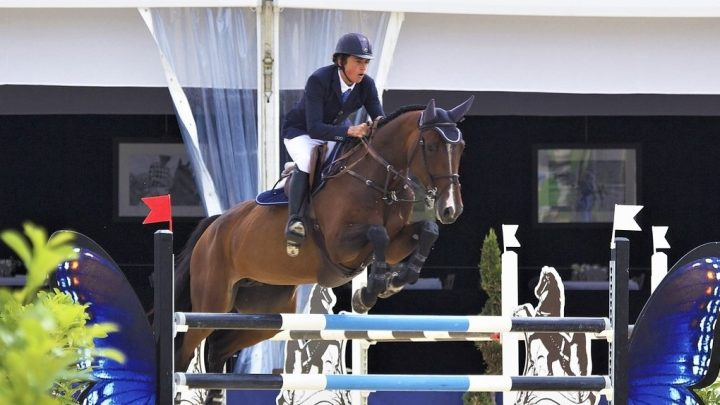 Best show jumping horses of all time