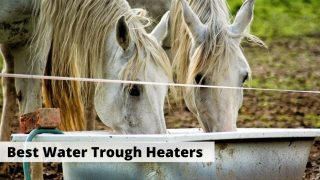 Best water trough heaters and heated water troughs
