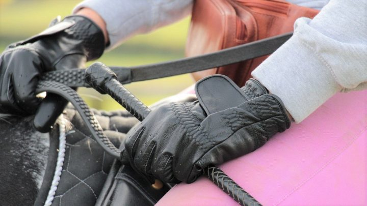 Bets winter horse riding gloves for equestrians