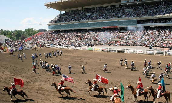 Calgary Stampede, the worlds biggest horse show