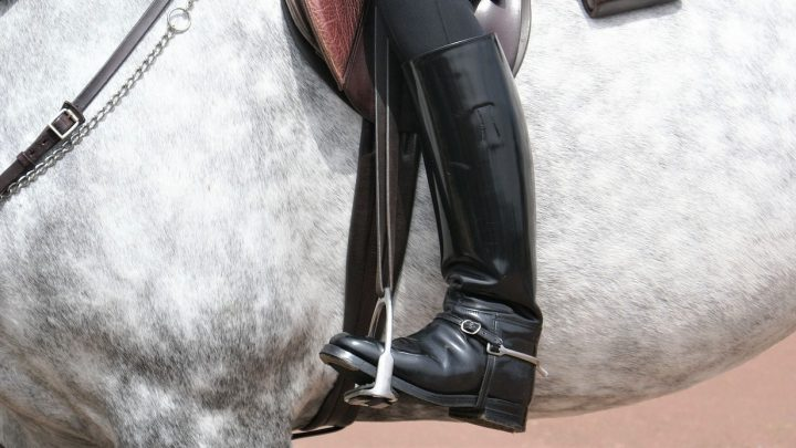 Best comfortable tall horse riding boots for men and women