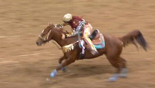 Flo Heirness barrel racing horse