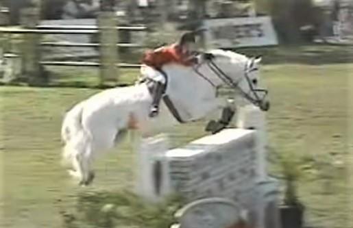 Gem Twist, showjumping horse legend