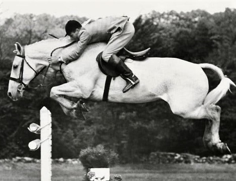 Harry and Snowman, famous $80 showjumping horse