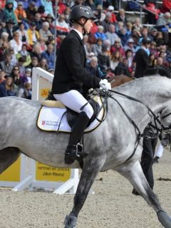 Biggest horse shows and equestrian events in the world