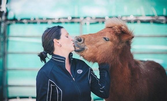 Shetland pony and woman kissing
