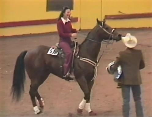 Sonny Bit O'Both, barrel racing horse