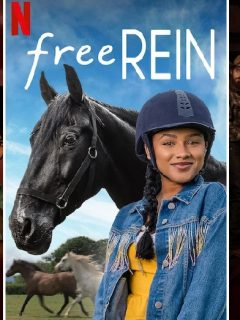 TV shows like Heartland horse lovers will enjoy