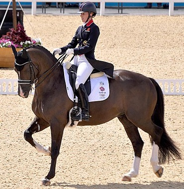 Valegro, famous dressage horse