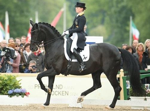 Weihegold, dressage horse being ridden by Isabell Werth