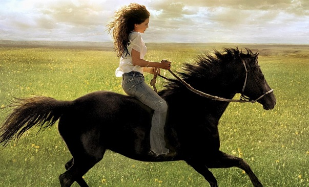 Flicka movie for horse lovers and equestrians