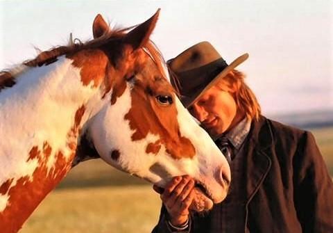 Hidalgo horse movie