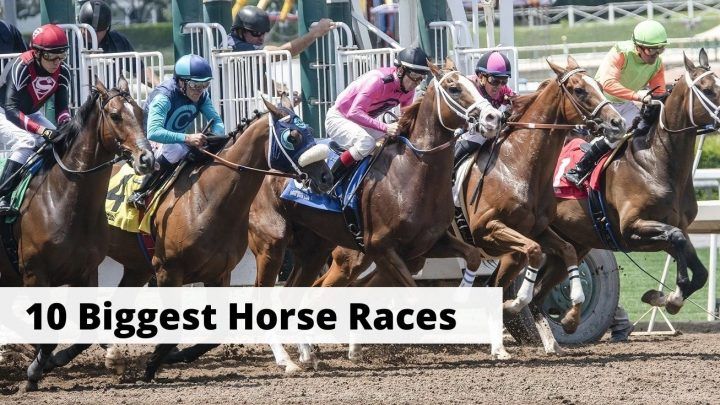 Biggest horse racing events in the world