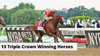 All 13 Triple Crown winning horses. Facts, History, and photos