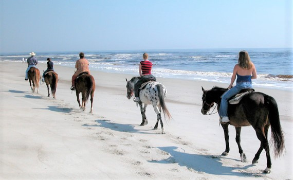 A group of horse riders on Amelia Island in Florida