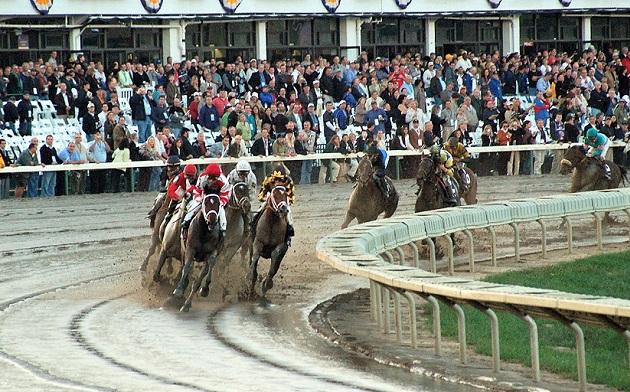 Breeders' Cup 2007 horse race