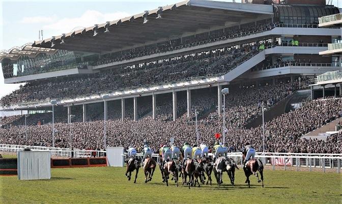 Cheltenham Festival horse race track