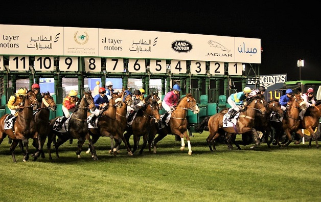 Dubai World Cup horse race starting line with horses starting the race
