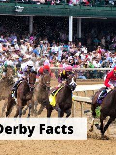 Kentucky Derby horse race facts