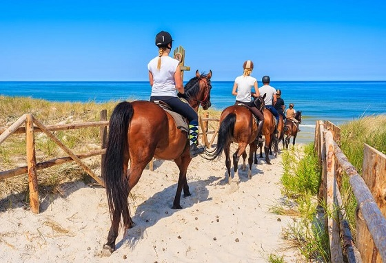 People horse riding on Myrtle Beach in South Carolina