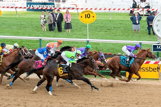 Preakness Stakes horse racing event in the United States