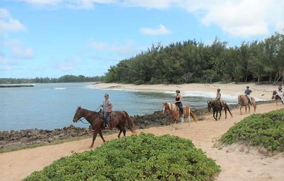 Turtle Bay, Hawaii horse riding tour