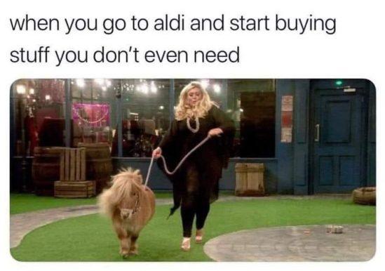 When you buy things you don't need equestrian meme
