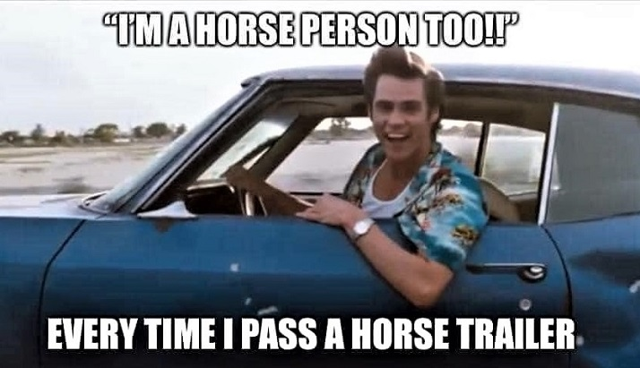 When you pass a horse trailer on the motorway meme