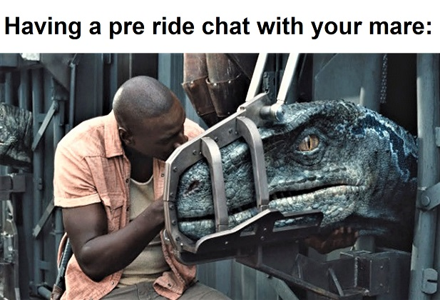 Having a pre ride chat with your moody mare dinosaur meme