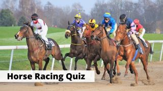 Horse Racing Quiz with 15 trivia questions and answers