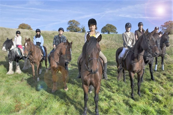 Main cast of Free Rein riding horses