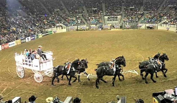National Western Stock Show & Rodeo in Colorado