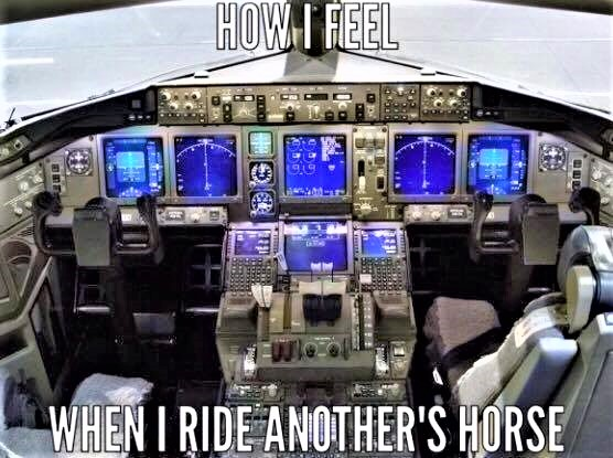 Riding someone else's horse meme