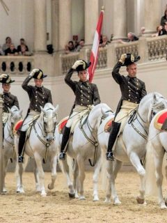 Best horse attractions in the world you need to visit