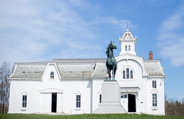 The University of Vermont Morgan Horse Farm