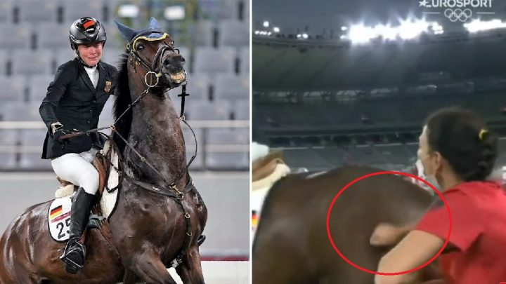 German Modern Pentathlon coach and rider disqualified from Tokyo 2020 Olympics for punch horse abuse