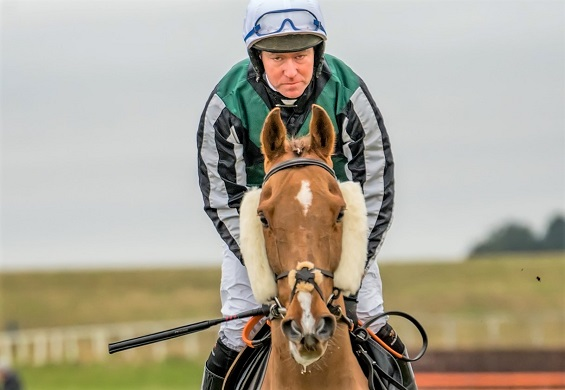 Horse and jockey looking at the camera on a race track
