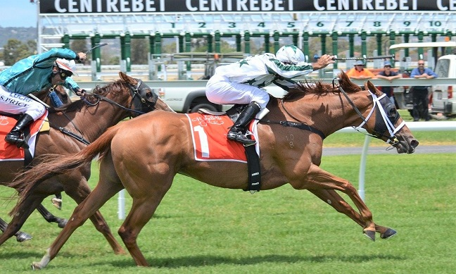 Horse racing in the lead near the finish line