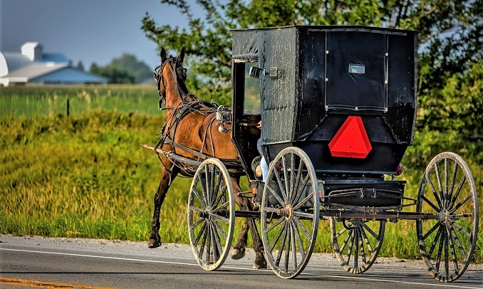 Amish horse-drawn carriage on the road
