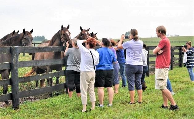 Claiborne Farm horse racing attraction
